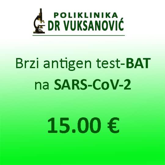 SARS-CoV-2-BAT